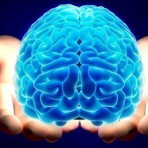 Основополагающие положения эриксоновского гипноза